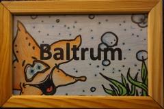 1 Baltrum